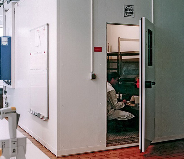 Walk-In Stability Test Chambers